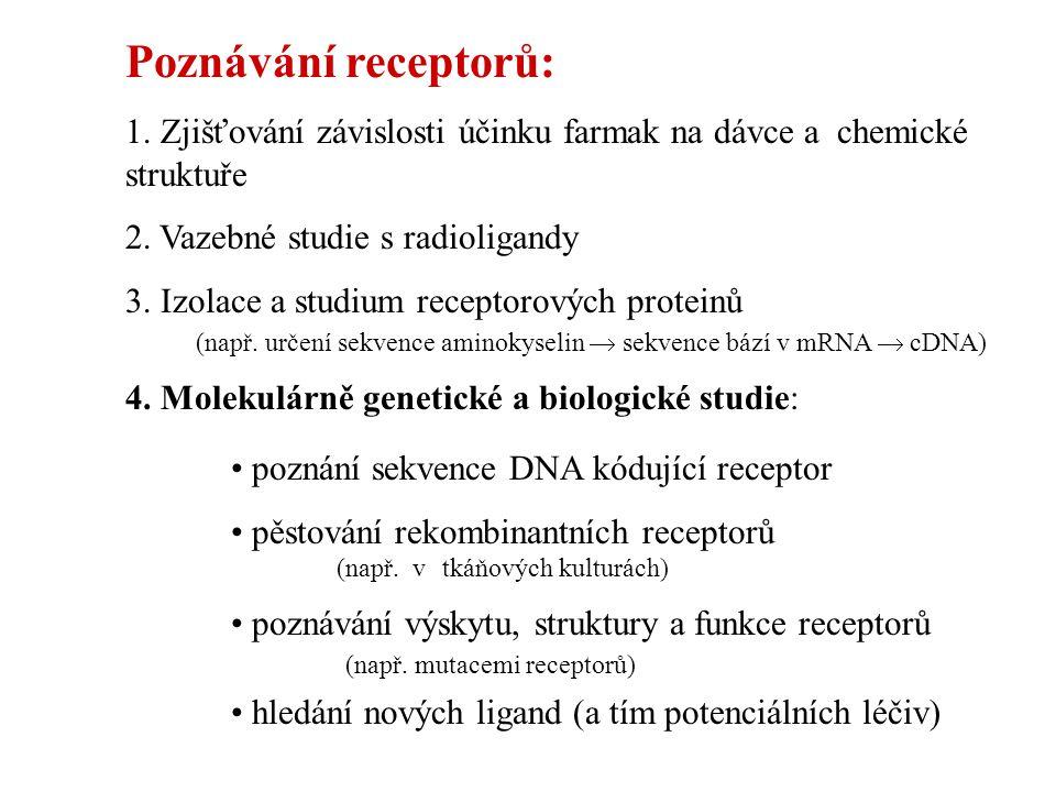 Poznávání receptorů: 1. Zjišťování závislosti účinku farmak na dávce a chemické struktuře 2. Vazebné studie s radioligandy 3. Izolace a studium recept