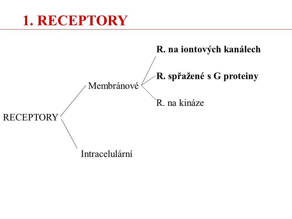 """RECEPTORY NA IONTOVÝCH KANÁLECH (""""ionotropní receptory ) - asi na 90% synapsí v CNS - pro rychlé děje (msec) - příklady: NIKOTINOVÝ, GLUTAMÁTOVÝ RECEPTOR: Na + do buňky, depolarizace, excitace GABA A RECEPTOR: Cl - do buňky, hyperpolarizace, inhibice"""