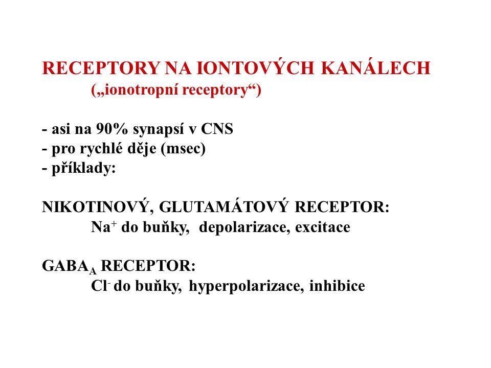 """RECEPTORY NA IONTOVÝCH KANÁLECH (""""ionotropní receptory"""") - asi na 90% synapsí v CNS - pro rychlé děje (msec) - příklady: NIKOTINOVÝ, GLUTAMÁTOVÝ RECEP"""