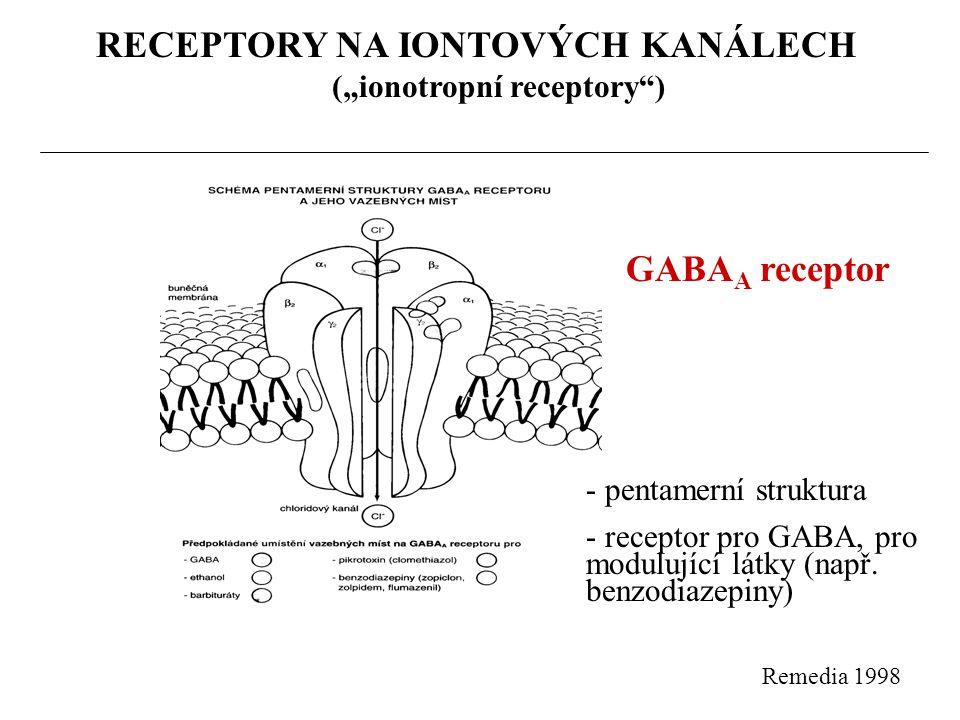 """RECEPTORY SPŘAŽENÉ S G PROTEINY (""""metabotropní receptory ) - místo působení asi 45% léčiv - pomalejší děje (sec."""