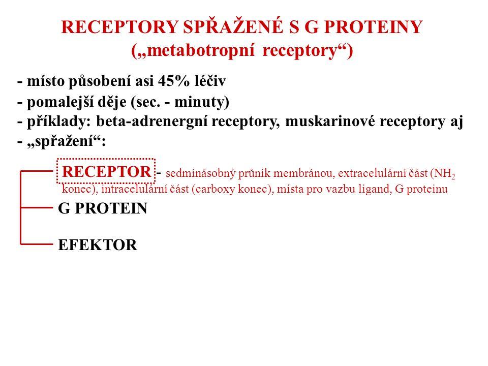 """RECEPTORY SPŘAŽENÉ S G PROTEINY (""""metabotropní receptory"""") - místo působení asi 45% léčiv - pomalejší děje (sec. - minuty) - příklady: beta-adrenergní"""