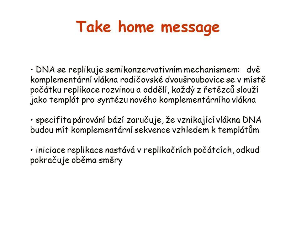 Take home message DNA se replikuje semikonzervativním mechanismem: dvě komplementární vlákna rodičovské dvoušroubovice se v místě počátku replikace ro