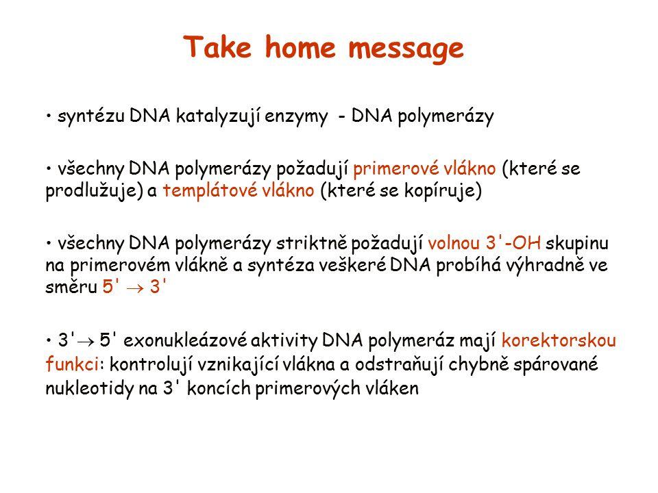 Take home message syntézu DNA katalyzují enzymy - DNA polymerázy všechny DNA polymerázy požadují primerové vlákno (které se prodlužuje) a templátové v