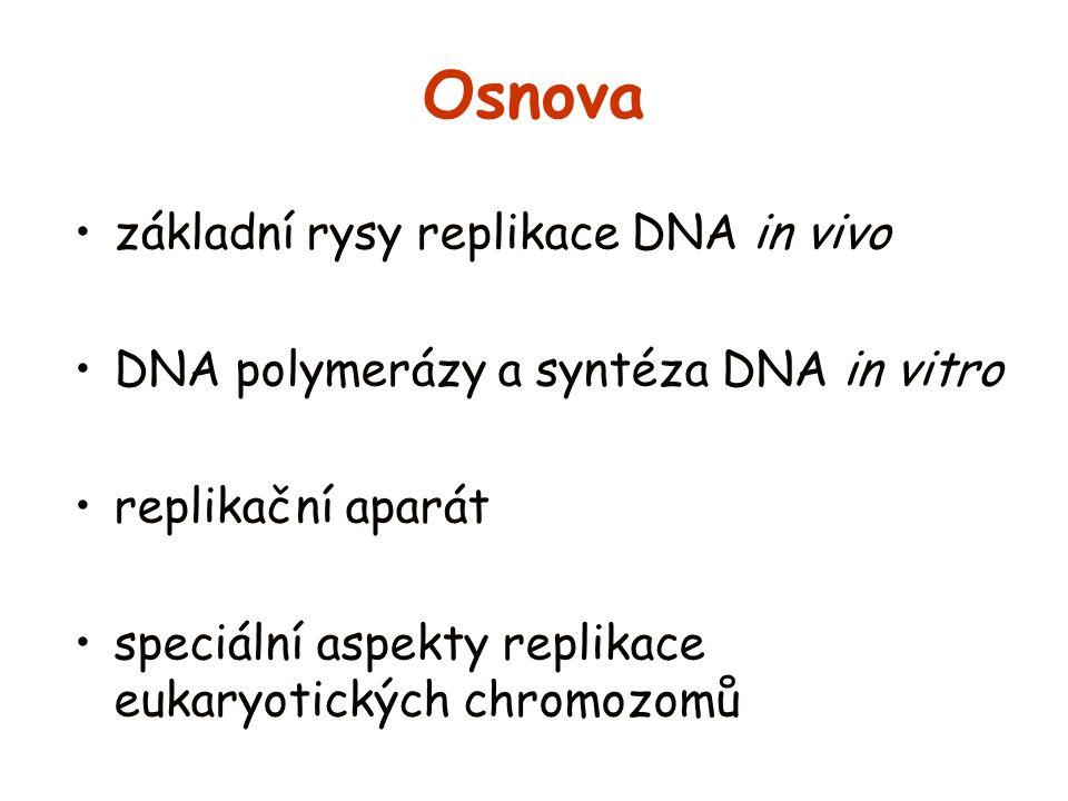 Osnova základní rysy replikace DNA in vivo DNA polymerázy a syntéza DNA in vitro replikační aparát speciální aspekty replikace eukaryotických chromozo