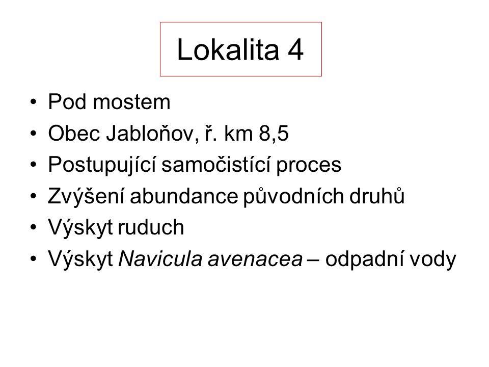Lokalita 4 Pod mostem Obec Jabloňov, ř.