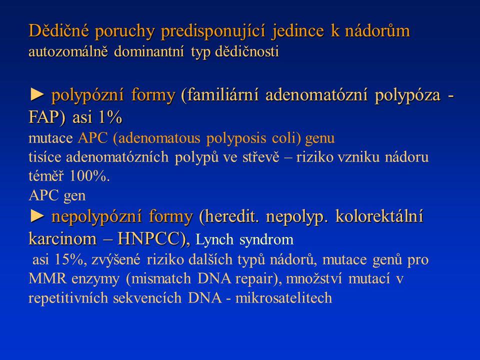 Dědičné poruchy predisponující jedince k nádorům autozomálně dominantní typ dědičnosti ► polypózní formy (familiární adenomatózní polypóza - FAP) asi