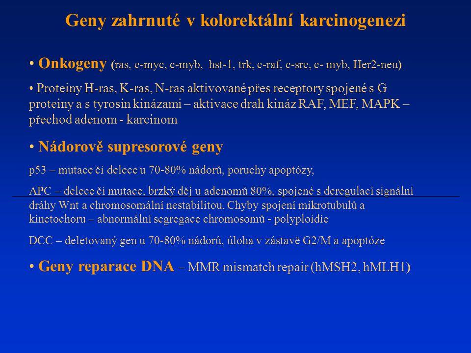 Geny zahrnuté v kolorektální karcinogenezi Onkogeny (ras, c-myc, c-myb, hst-1, trk, c-raf, c-src, c- myb, Her2-neu) Proteiny H-ras, K-ras, N-ras aktiv