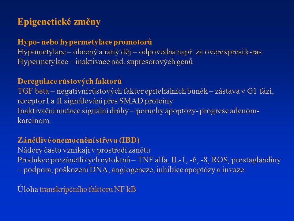 Epigenetické změny Hypo- nebo hypermetylace promotorů Hypometylace – obecný a raný děj – odpovědná např. za overexpresi k-ras Hypermetylace – inaktiva