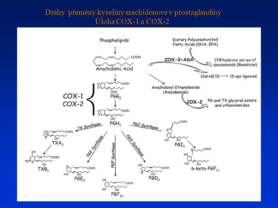 Dráhy přeměny kyseliny arachidonové v prostaglandiny Úloha COX-1 a COX-2