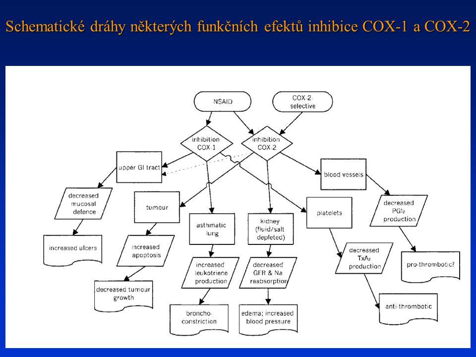 Schematické dráhy některých funkčních efektů inhibice COX-1 a COX-2