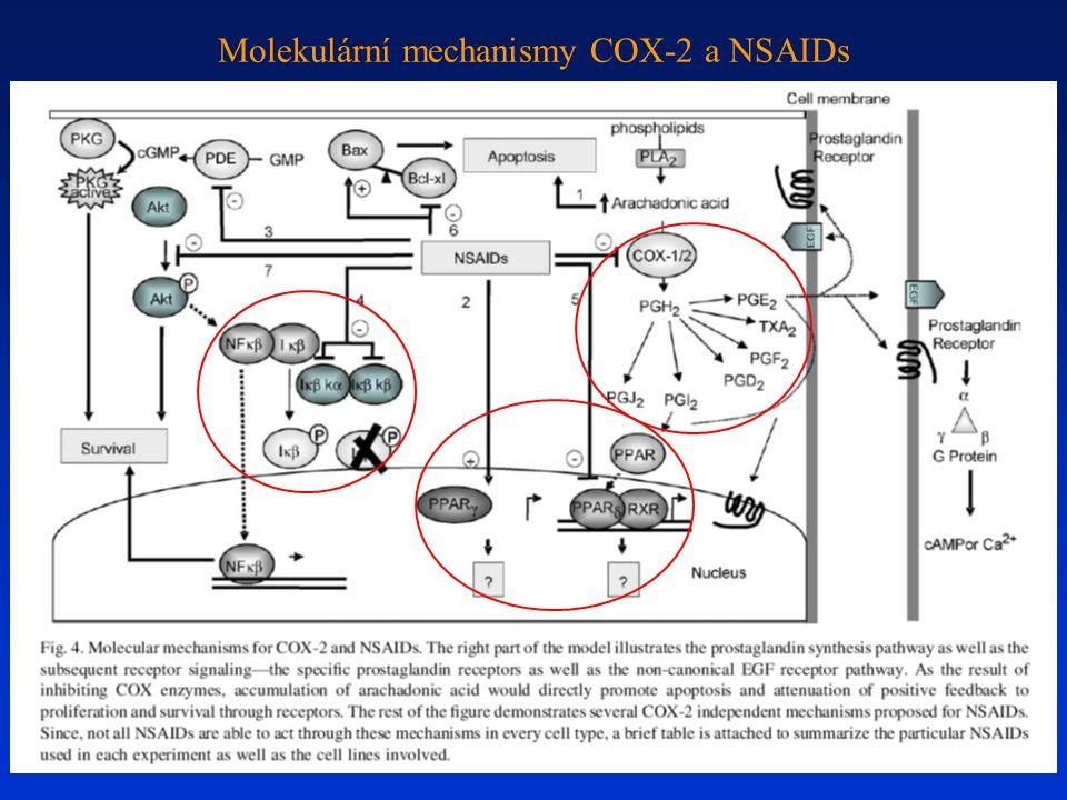 Molekulární mechanismy COX-2 a NSAIDs