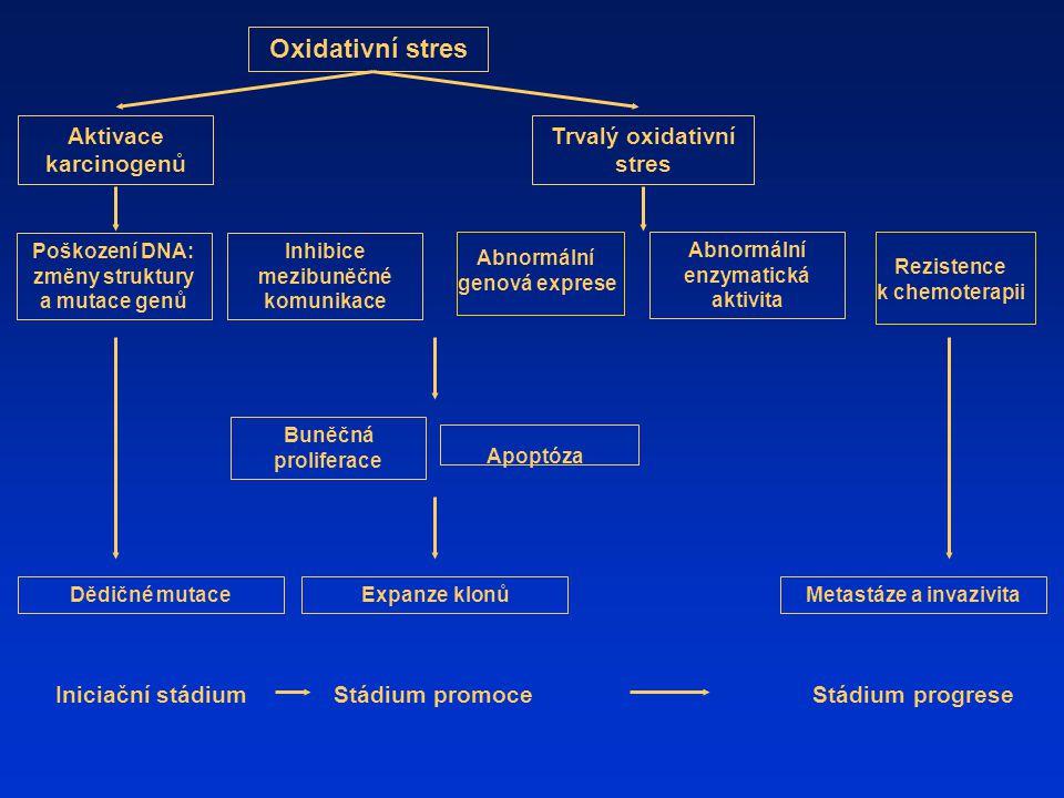 Poškození DNA: změny struktury a mutace genů Oxidativní stres Aktivace karcinogenů Inhibice mezibuněčné komunikace Abnormální genová exprese Abnormáln