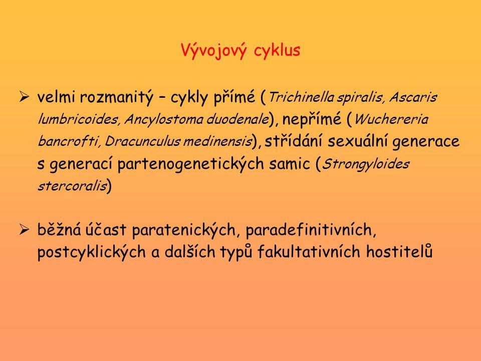 Vývojový cyklus  velmi rozmanitý – cykly přímé ( Trichinella spiralis, Ascaris lumbricoides, Ancylostoma duodenale ), nepřímé ( Wuchereria bancrofti, Dracunculus medinensis ), střídání sexuální generace s generací partenogenetických samic ( Strongyloides stercoralis )  běžná účast paratenických, paradefinitivních, postcyklických a dalších typů fakultativních hostitelů