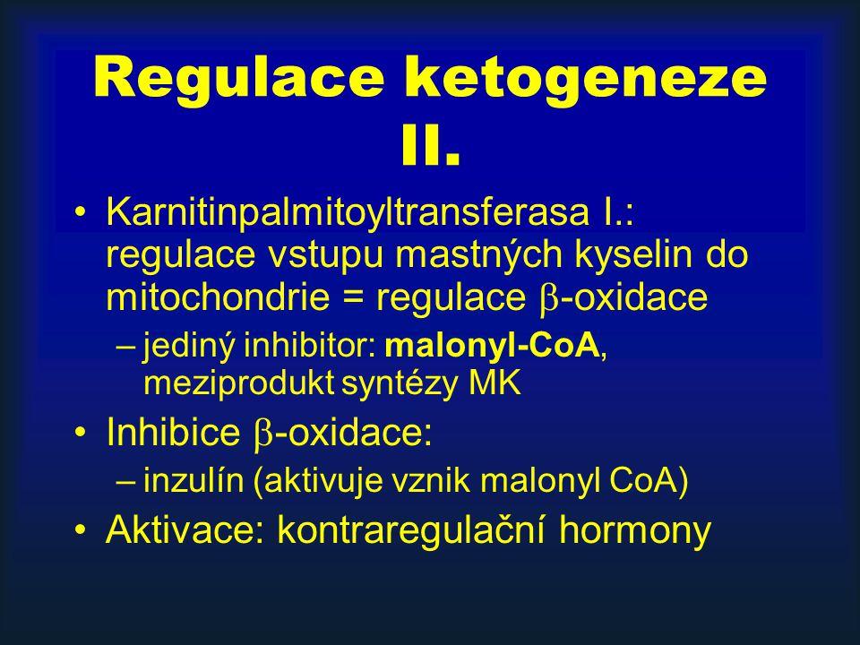 Regulace ketogeneze II. Karnitinpalmitoyltransferasa I.: regulace vstupu mastných kyselin do mitochondrie = regulace  -oxidace –jediný inhibitor: mal