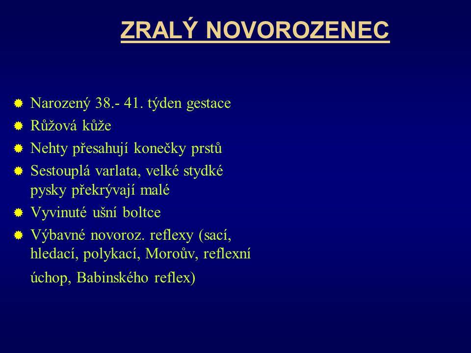 ZRALÝ NOVOROZENEC  Narozený 38.- 41.