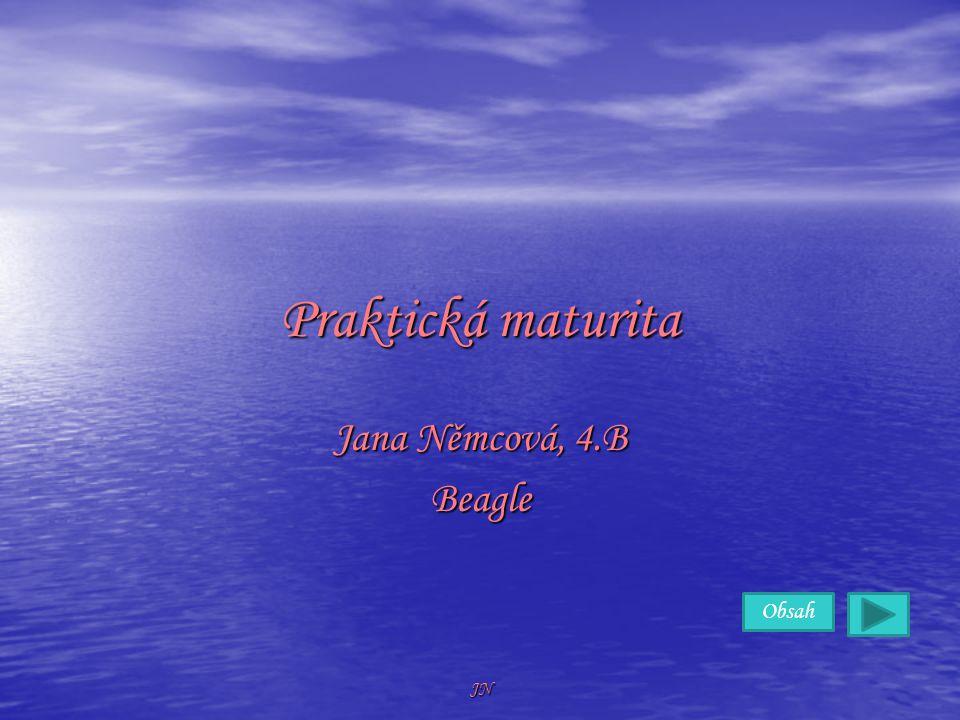 Obsah JN Praktická maturita Jana Němcová, 4.B Beagle