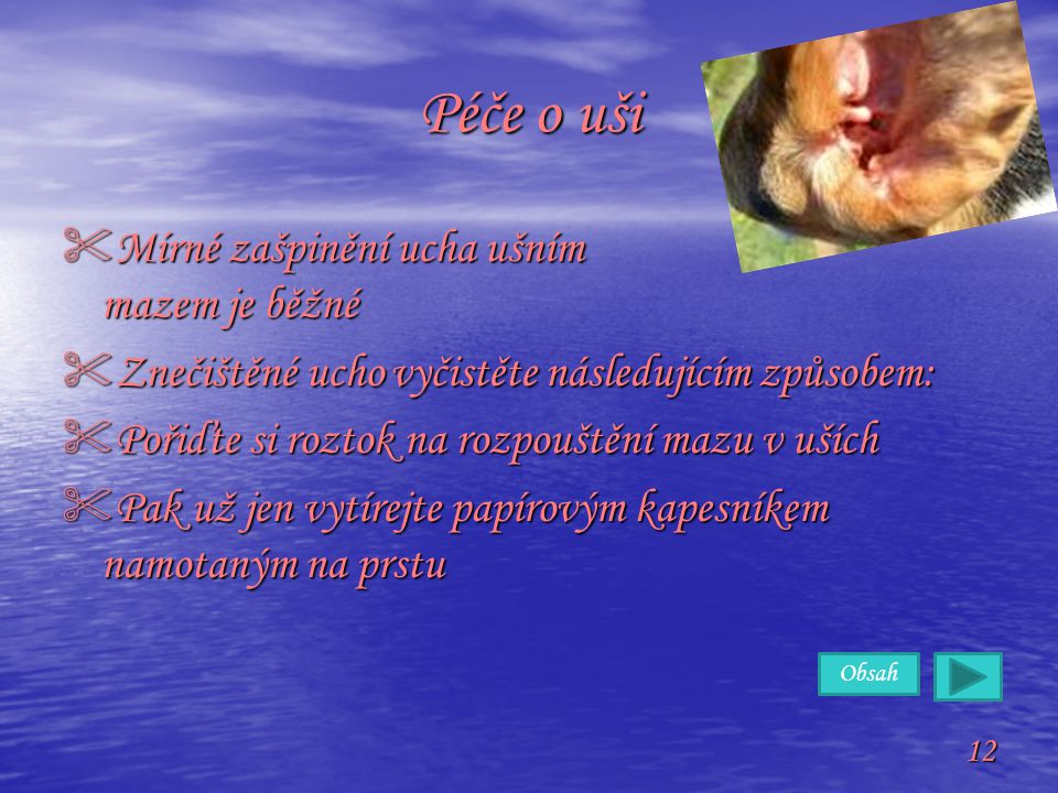 Obsah 12 Péče o uši  Mírné zašpinění ucha ušním mazem je běžné  Znečištěné ucho vyčistěte následujícím způsobem:  Pořiďte si roztok na rozpouštění