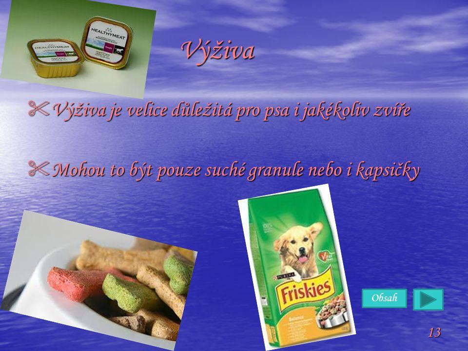 Obsah 13 Výživa Výživa VVVVýživa je velice důležitá pro psa i jakékoliv zvíře MMMMohou to být pouze suché granule nebo i kapsičky