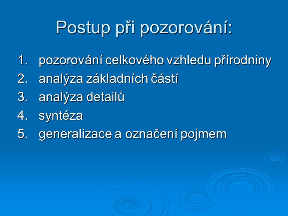 Postup při pozorování: 1. pozorování celkového vzhledu přírodniny 2. analýza základních částí 3. analýza detailů 4. syntéza 5. generalizace a označení