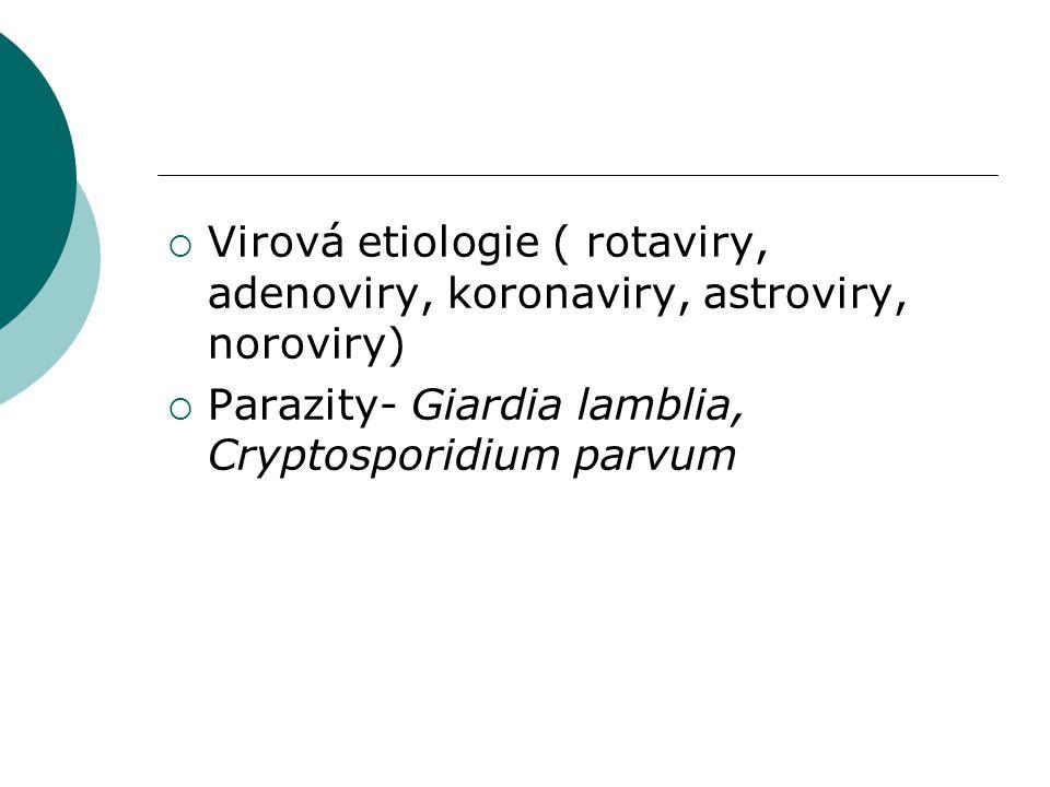  Virová etiologie ( rotaviry, adenoviry, koronaviry, astroviry, noroviry)  Parazity- Giardia lamblia, Cryptosporidium parvum
