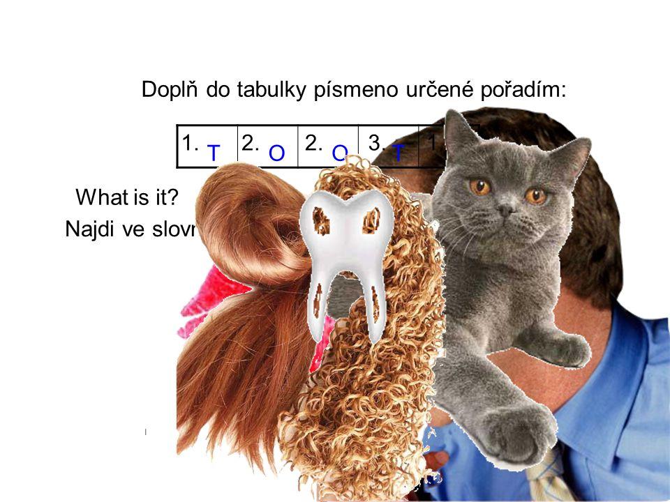 Doplň do tabulky písmeno určené pořadím: TOOH 1.2. 3.1. T What is it? Najdi ve slovníku. 12