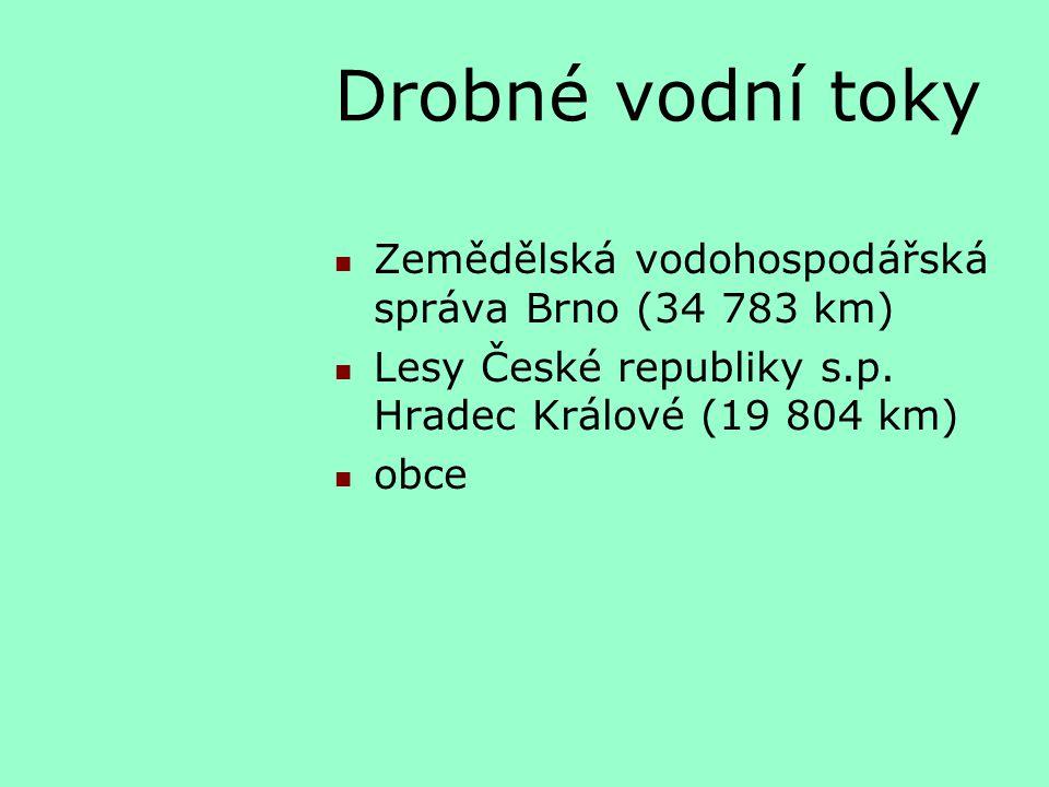 Drobné vodní toky Zemědělská vodohospodářská správa Brno (34 783 km) Lesy České republiky s.p. Hradec Králové (19 804 km) obce