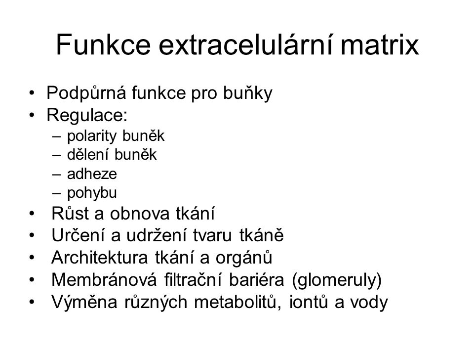 Funkce extracelulární matrix Podpůrná funkce pro buňky Regulace: –polarity buněk –dělení buněk –adheze –pohybu Růst a obnova tkání Určení a udržení tv