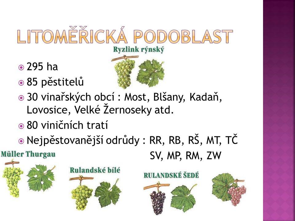  295 ha  85 pěstitelů  30 vinařských obcí : Most, Blšany, Kadaň, Lovosice, Velké Žernoseky atd.