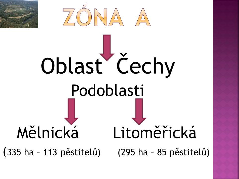 Oblast Čechy Podoblasti Mělnická Litoměřická ( 335 ha – 113 pěstitelů) (295 ha – 85 pěstitelů)
