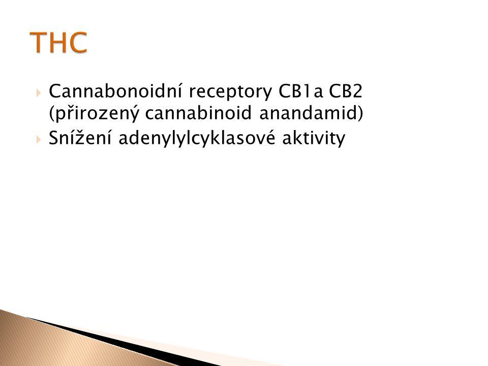  Cannabonoidní receptory CB1a CB2 (přirozený cannabinoid anandamid)  Snížení adenylylcyklasové aktivity