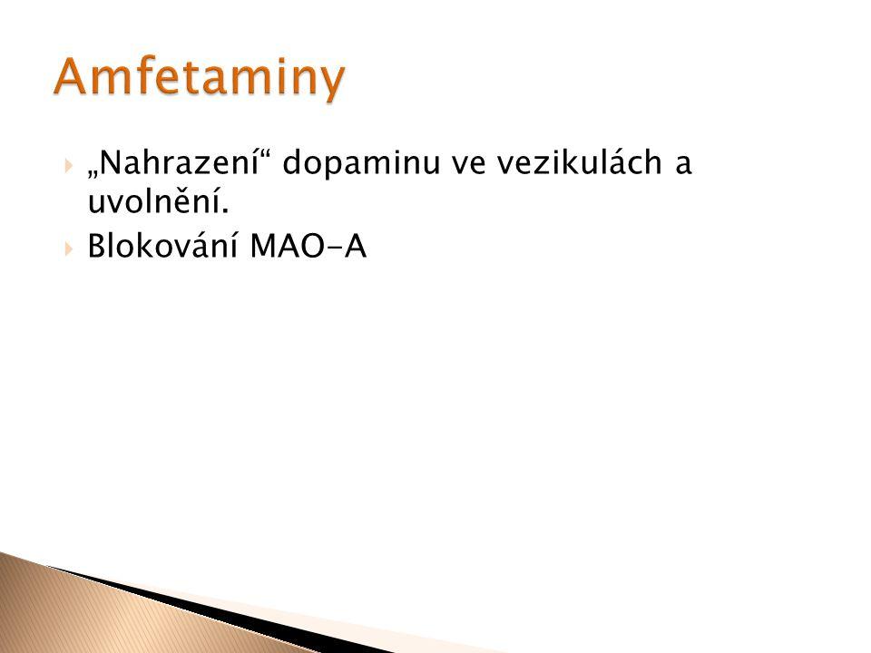 """ """"Nahrazení"""" dopaminu ve vezikulách a uvolnění.  Blokování MAO-A"""