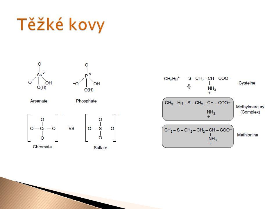  THC je metabolizován P 450 (3A4) na 11- hydroxy –THC a poté na THC-COOH  55 % vyloučeno stolicí ve formě aduktu THC- COOH a glukuronové kyseliny  20 % vyloučeno močí ve formě THC-COOH