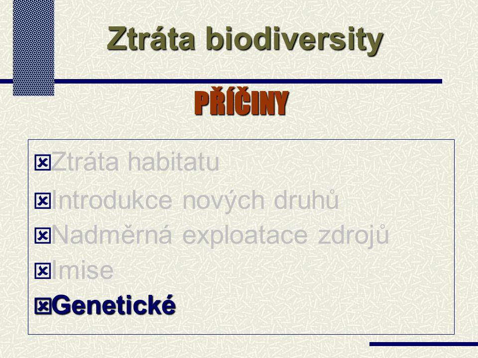 PŘÍČINY  Ztráta habitatu  Introdukce nových druhů  Nadměrná exploatace zdrojů  Imise  Genetické Ztráta biodiversity
