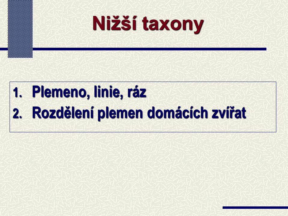 1. Plemeno, linie, ráz 2. Rozdělení plemen domácích zvířat Nižší taxony