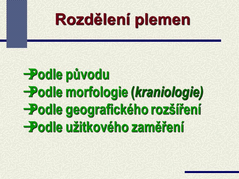 1. Barvy 2. Rohy 3. Typ srsti 4. Krevní skupiny 5. Ostatní Významné kvalitativní znaky