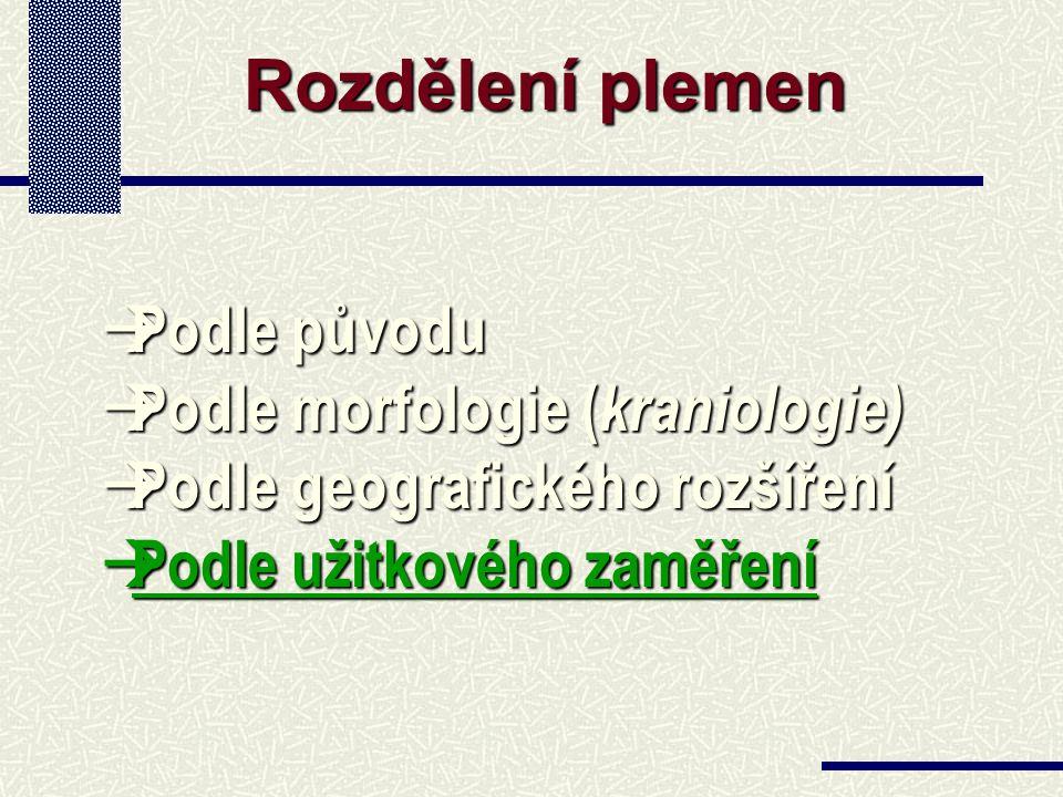 Rozdělení plemen à Podle původu à Podle morfologie ( kraniologie) à Podle geografického rozšíření à Podle užitkového zaměření