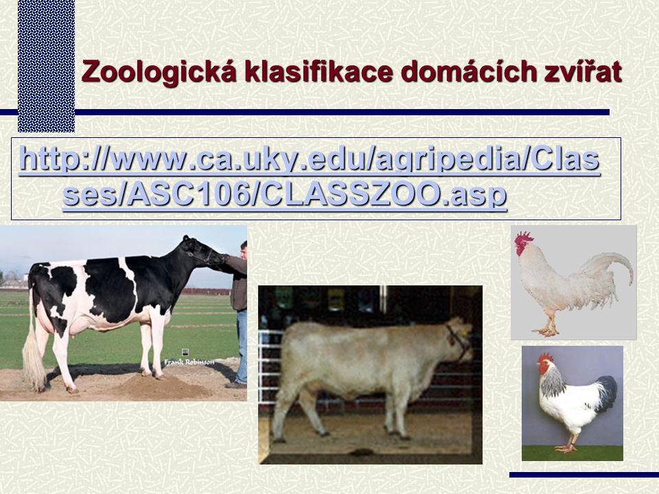 http://www.ca.uky.edu/agripedia/Clas ses/ASC106/CLASSZOO.asp http://www.ca.uky.edu/agripedia/Clas ses/ASC106/CLASSZOO.asp Zoologická klasifikace domácích zvířat