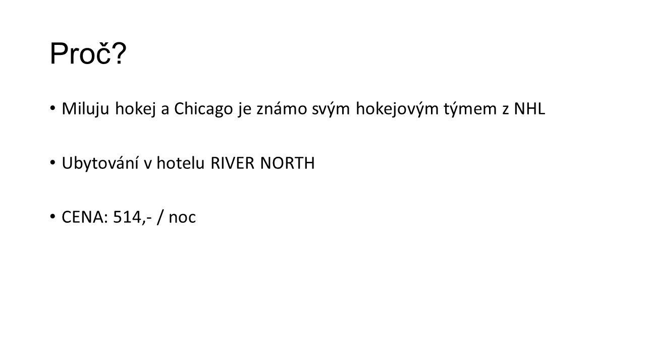 Proč? Miluju hokej a Chicago je známo svým hokejovým týmem z NHL Ubytování v hotelu RIVER NORTH CENA: 514,- / noc