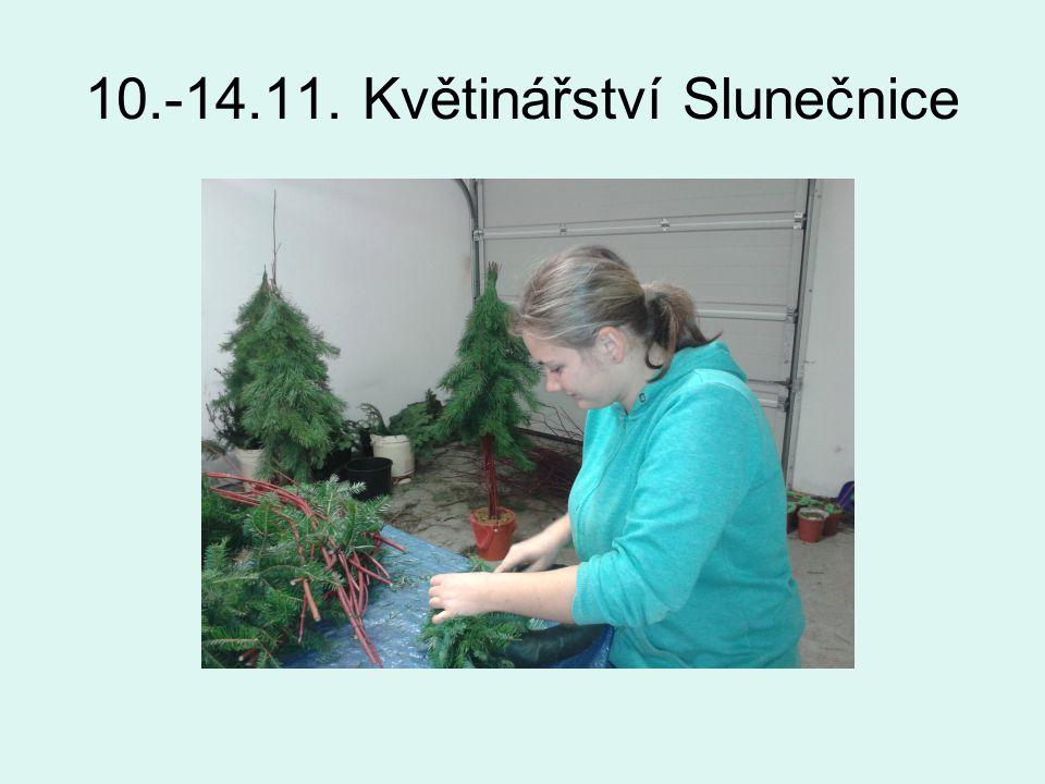 24.-28.11. Květinářství Slunečnice