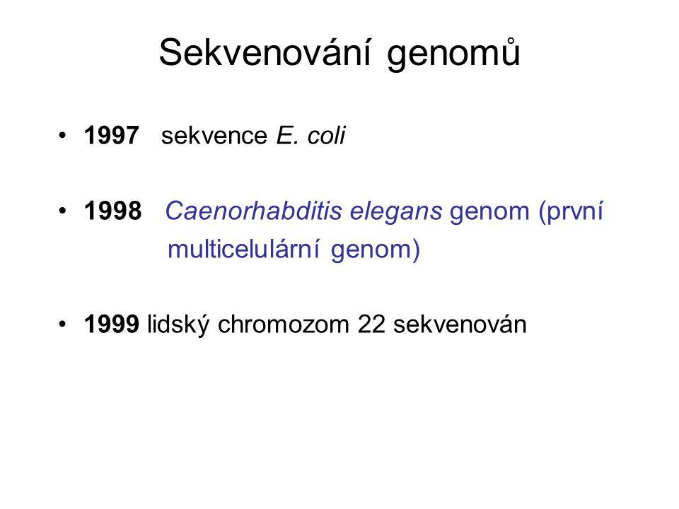 1997 sekvence E. coli 1998 Caenorhabditis elegans genom (první multicelulární genom) 1999 lidský chromozom 22 sekvenován Sekvenování genomů