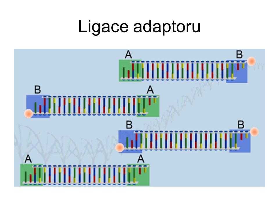 Ligace adaptoru