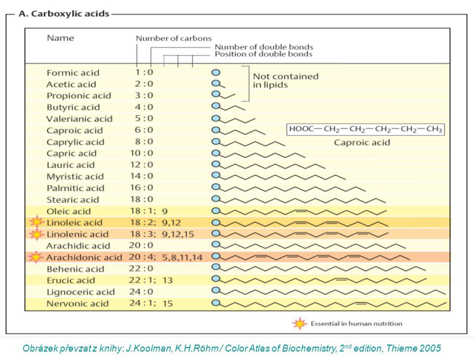 Obrázek převzat z knihy: J.Koolman, K.H.Röhm / Color Atlas of Biochemistry, 2 nd edition, Thieme 2005
