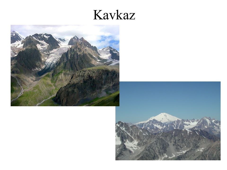 Kavkaz