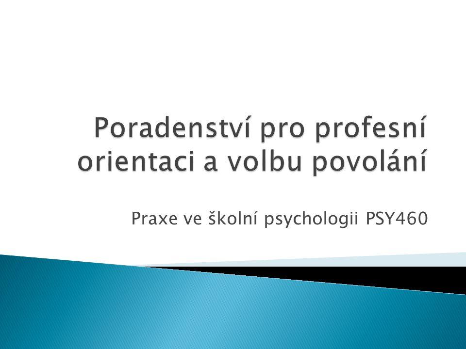 Praxe ve školní psychologii PSY460