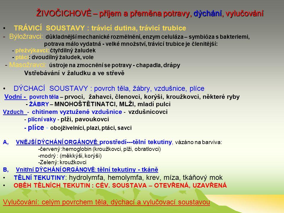 ŽIVOČICHOVÉ – příjem a přeměna potravy, dýchání, vylučování TRÁVICÍ SOUSTAVY : trávicí dutina, trávicí trubice - Býložravci: důkladnější mechanické rozmělnění, enzym celuláza – symbióza s bakteriemi, potrava málo vydatná - velké množství, trávicí trubice je členitější: - přežvýkavci: čtyřdilný žaludek - ptáci: dvoudílný žaludek, vole - Masožravci: ústroje na zmocnění se potravy - chapadla, drápy Vstřebávání v žaludku a ve střevě DÝCHACÍ SOUSTAVY : povrch těla, žábry, vzdušnice, plíce Vodní - povrch těla – prvoci, žahavci, členovci, korýši, kroužkovci, některé ryby - ŽÁBRY – MNOHOŠTĚTINATCI, MLŽI, mladí pulci Vzduch - chitinem vyztužené vzdušnice - vzdušnicovci - plícní vaky - plži, pavoukovci - plíce - obojživelníci, plazi, ptáci, savci A, VNĚJŠÍ DÝCHÁNÍ ORGÁNOVÉ: prostředí---tělní tekutiny, vázáno na barviva: -červený :hemoglobin (kroužkovci, plži, obratlovci) -modrý : (měkkýši, korýši) -Zelený: kroužkovci B, Vnitřní DÝCHÁNÍ ORGÁNOVÉ: tělní tekutiny - tkáně TĚLNÍ TEKUTINY : hydrolymfa, hemolymfa, krev, míza, tkáňový mok OBĚH TĚLNÍCH TEKUTIN : CÉV.