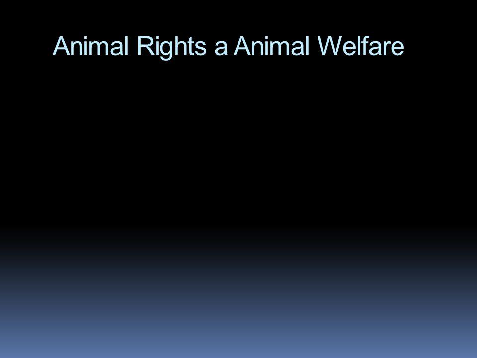 Animal Rights a Animal Welfare