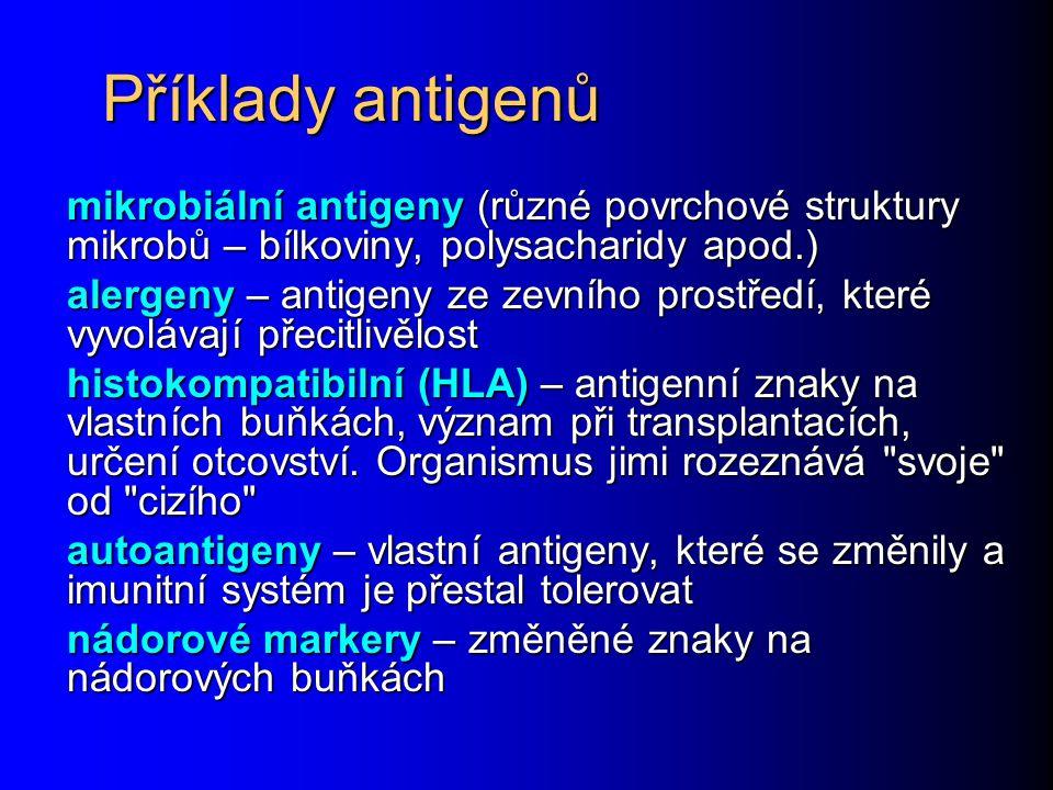 Příklady antigenů mikrobiální antigeny (různé povrchové struktury mikrobů – bílkoviny, polysacharidy apod.) alergeny – antigeny ze zevního prostředí,