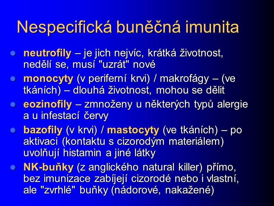 Nespecifická buněčná imunita neutrofily – je jich nejvíc, krátká životnost, nedělí se, musí