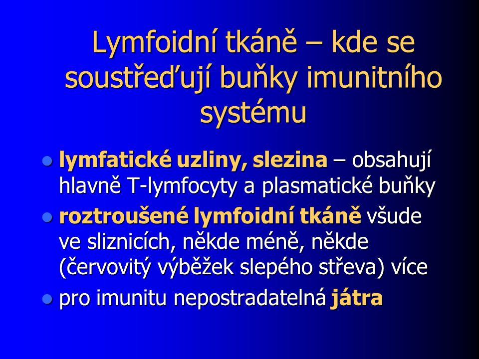 Lymfoidní tkáně – kde se soustřeďují buňky imunitního systému lymfatické uzliny, slezina – obsahují hlavně T-lymfocyty a plasmatické buňky lymfatické uzliny, slezina – obsahují hlavně T-lymfocyty a plasmatické buňky roztroušené lymfoidní tkáně všude ve sliznicích, někde méně, někde (červovitý výběžek slepého střeva) více roztroušené lymfoidní tkáně všude ve sliznicích, někde méně, někde (červovitý výběžek slepého střeva) více pro imunitu nepostradatelná játra pro imunitu nepostradatelná játra