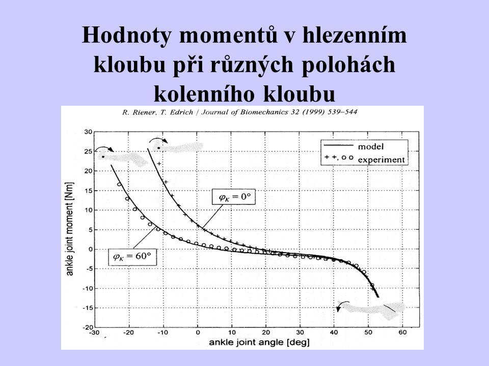 Hodnoty momentů v hlezenním kloubu při různých polohách kolenního kloubu